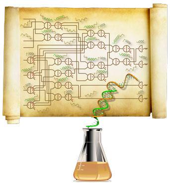 Molecular Programming