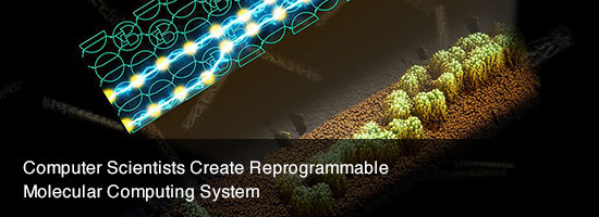 Computer Scientists Create Reprogrammable Molecular Computing System