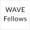 WAVE Fellows