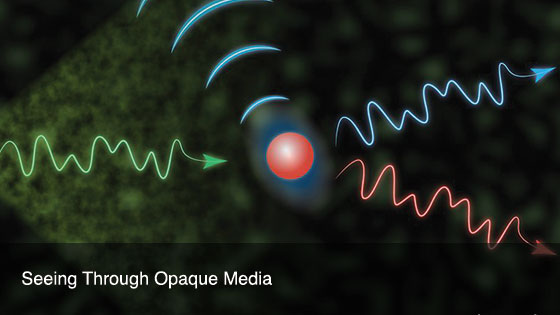 Seeing Through Opaque Media
