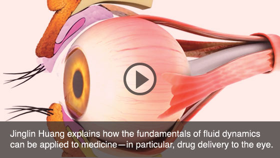 Jinglin Huang explains how the fundamentals of fluid dynamics can be applied to medicine—in particular, drug delivery to the eye.